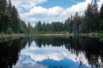 Peaceful lake Germany's Black Forest